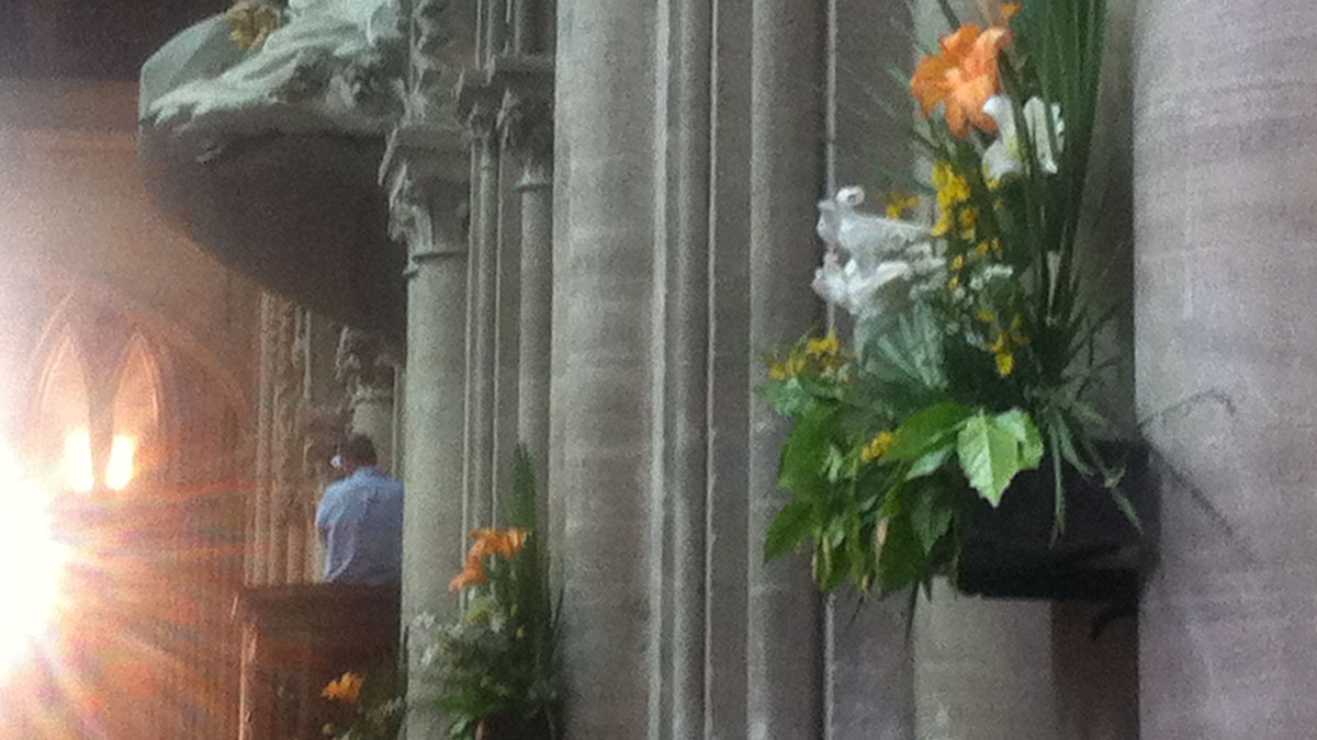Orange lilies at Bayeux Cathedral