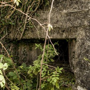 Exploring a World War Two Pillbox in Portadown