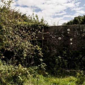 Overgrown pillbox on the Gilford Road, Portadown