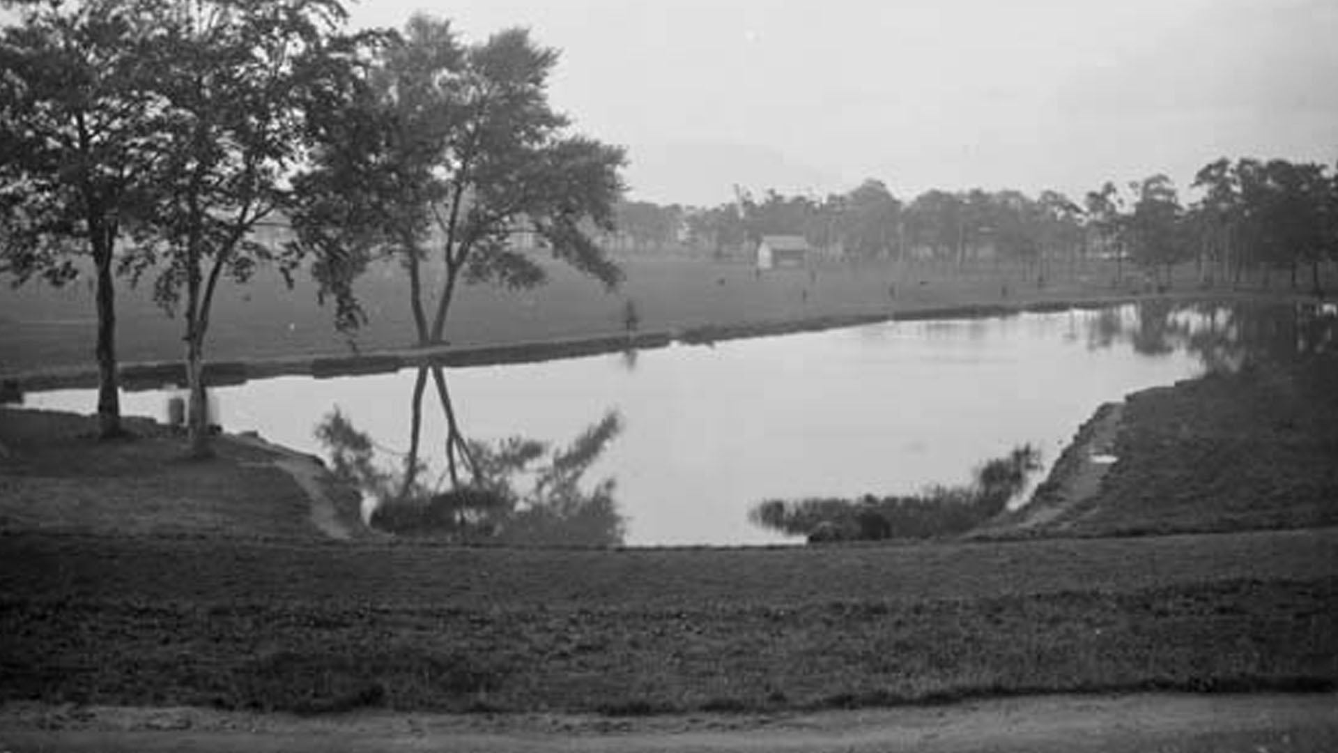 Ormeau Park Lake, Ormeau, South Belfast, Co. Antrim