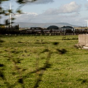 Cattle shed at Cluntoe Airfield, Co. Tyrone