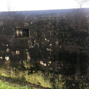 wartime-ni-annagh-pillbox-04