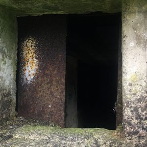 wartime-ni-annagh-pillbox-06